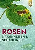 Rosenkrankheiten und Schädlinge: Erkennen und Behandeln von Wachstumsstörungen, Krankheiten und Schädlingen. Der Klassiker komplett neu in 6. Auflage