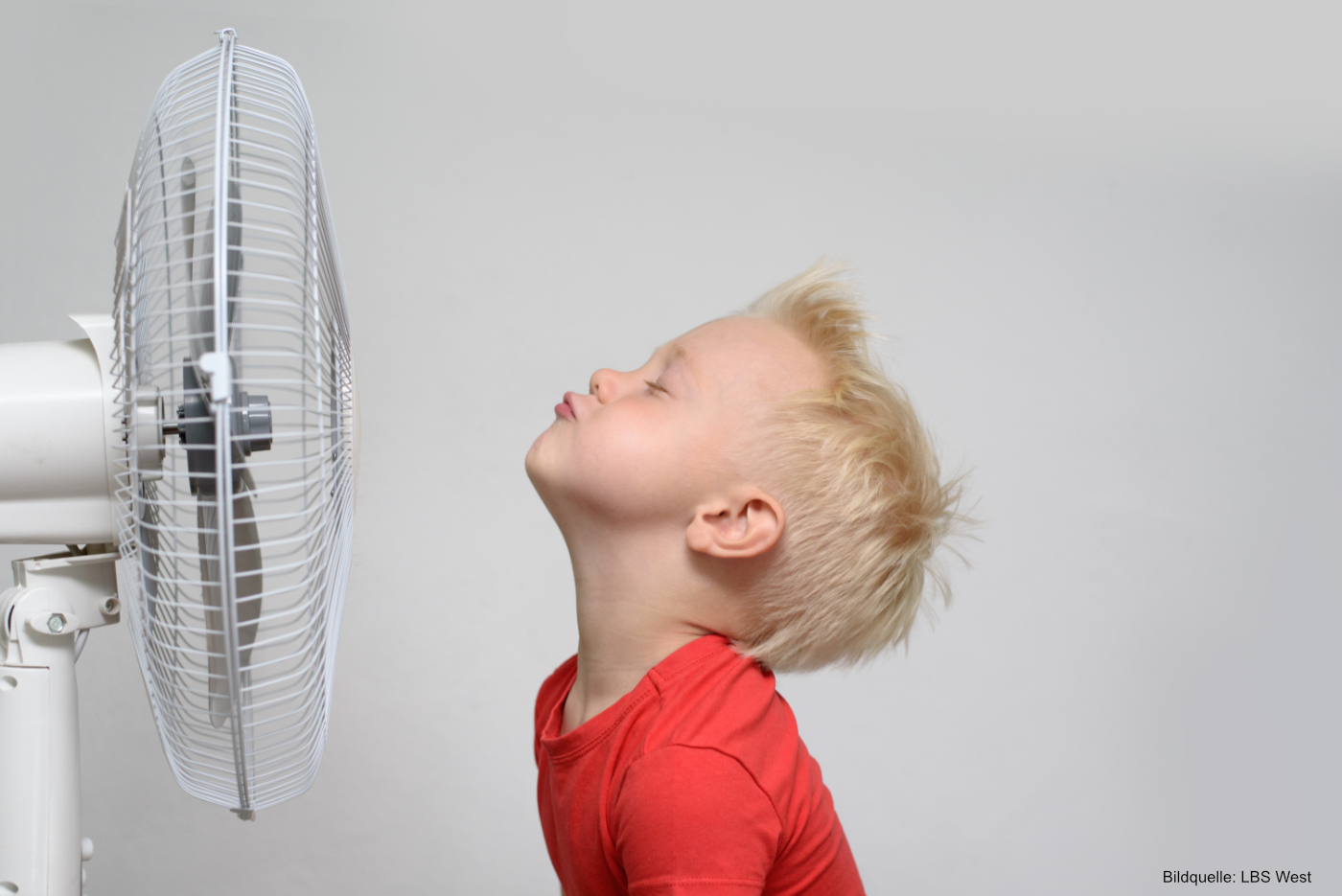 So bleiben Haus und Wohnung im Sommer angenehm kühl