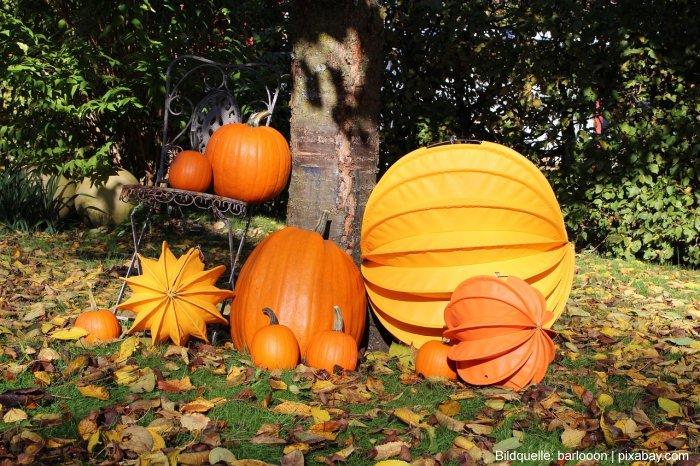 Garten im Herbst Tipps